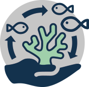 Logo for Protecting the future productive capacity of the ocean's ecosystems