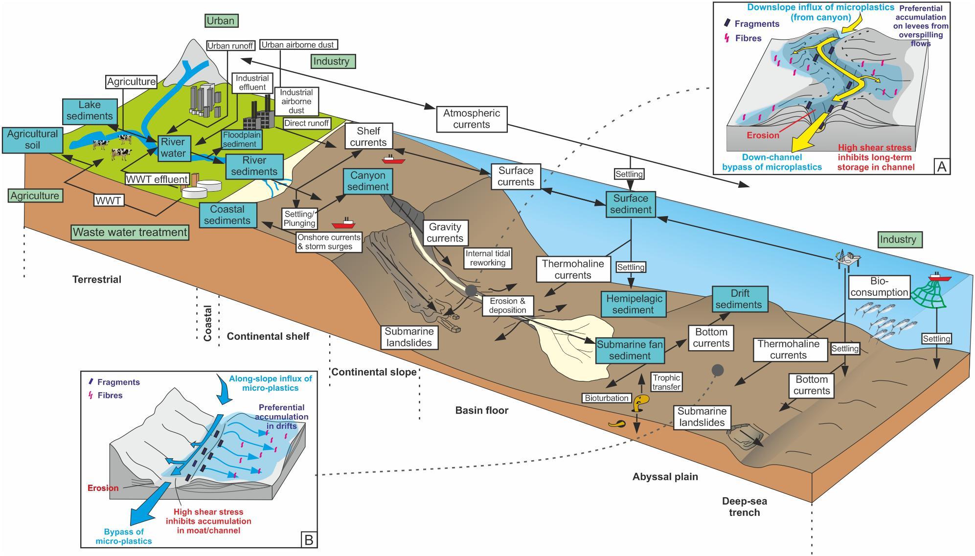 Microplastics accumulate in hotspots