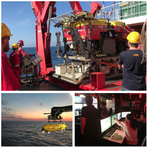 Deployments and observations from RRS James Cook