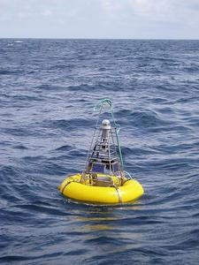 Surface buoy