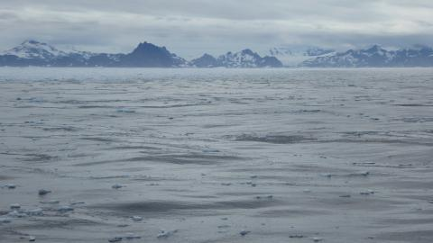 A dark ocean surface littered with ice, an inhospitable and remote location
