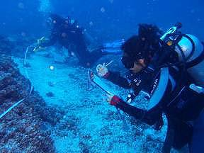 Diving survey team at work in the Galapagos