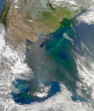Aqua MODIS – January 2010
