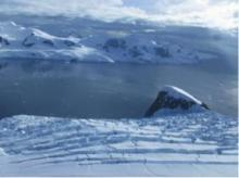 Andvord Bay, Antarctica – fjord hotspot of seafloor marine life (credit: Craig Smith, University of Hawai'i at Mānoa)