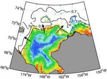 False-colour satellite image of ice-edge phytoplankton blooms