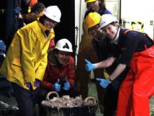 Nina, Alex, Lenka, Colette and Zan being very excited about a bucket full of deep-sea creatures