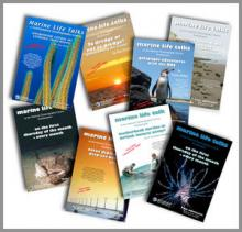 Some posters from the many talks over the past ten years