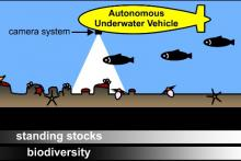 Photographic survey by autonomous underwater vehicle