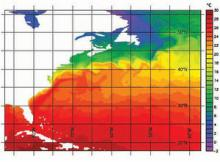 Nemo model: North Atlantic sea surface temperature, showing the eddies produced by the separated Gulf Stream