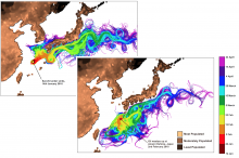 Sanchi oil spill modelling - February 2018