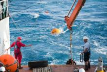 RAPID buoys