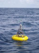 Surface buoy