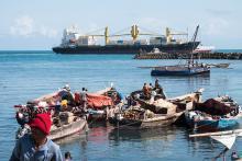 Fishing vessels and large cargo ships off Zanzibar