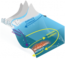 Simplified graphic showing how seafloor currents create microplastics hotspots in the deep-sea