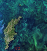 Algae bloom in Baltic Sea, July 2019 Copernicus Sentinel-2 Credits: ESA CC BY-SA 3.0 IGO